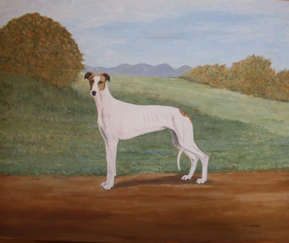 Greyhound in a landscape