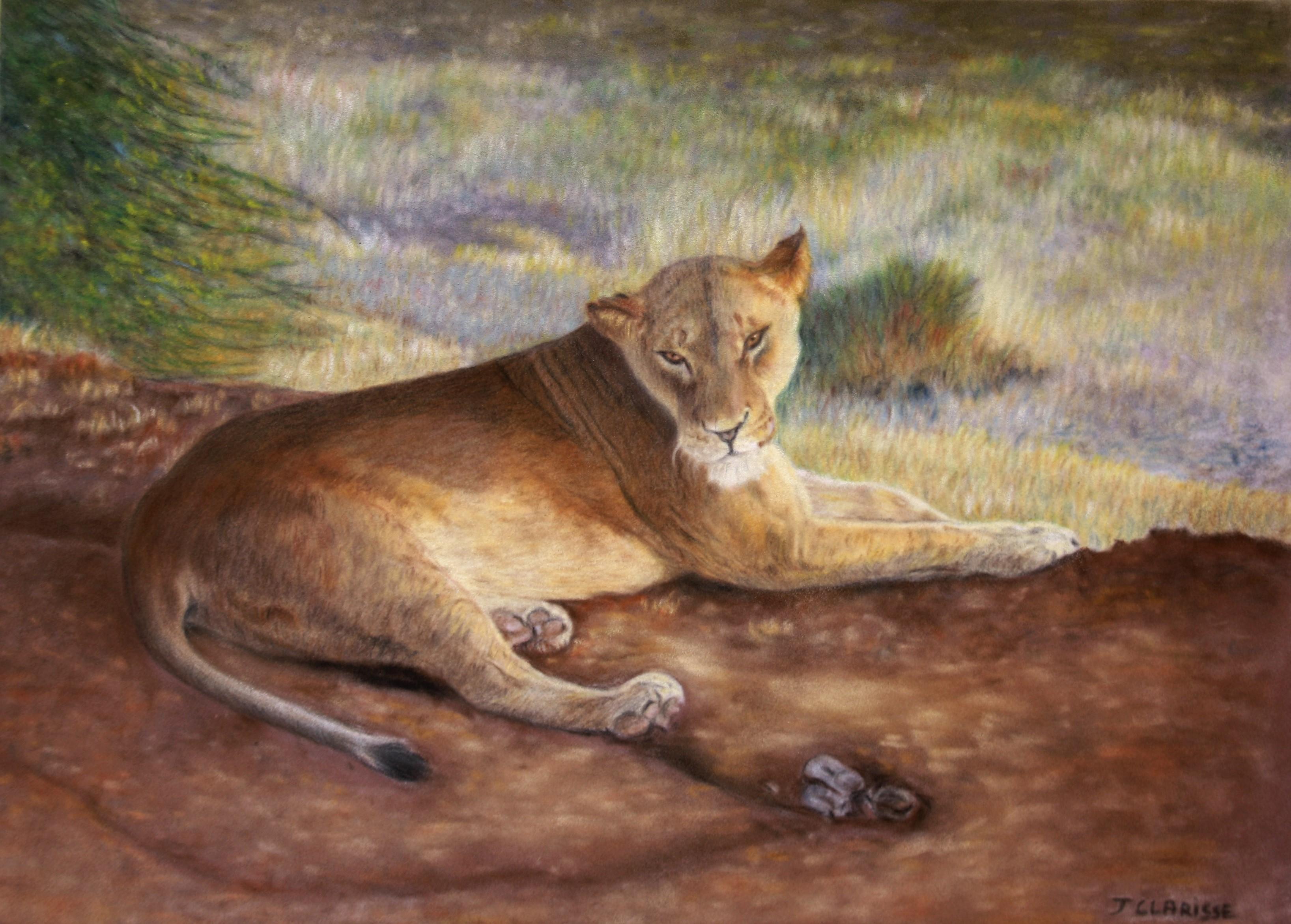 Lionne du Kenya