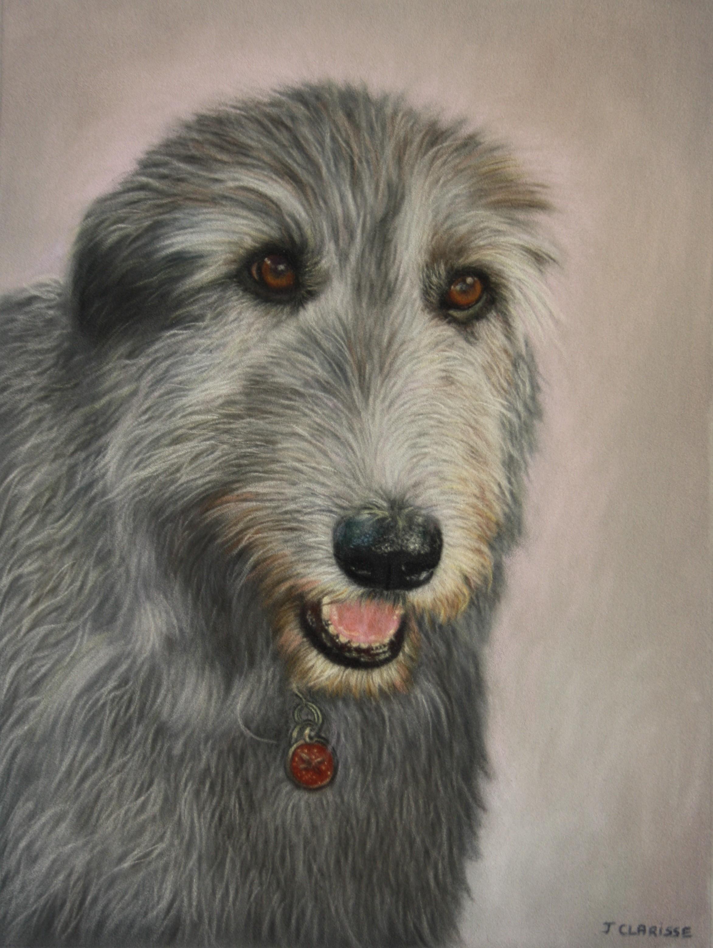 Isadora (Irish wolfhound)