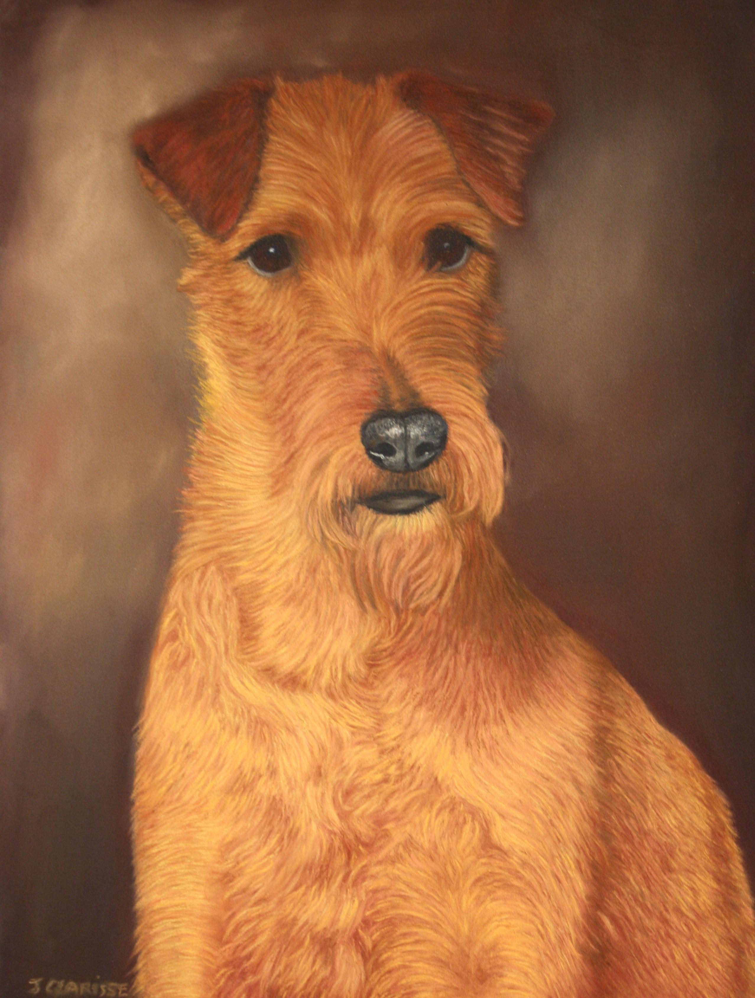 Breezy Becket, Irish terrier