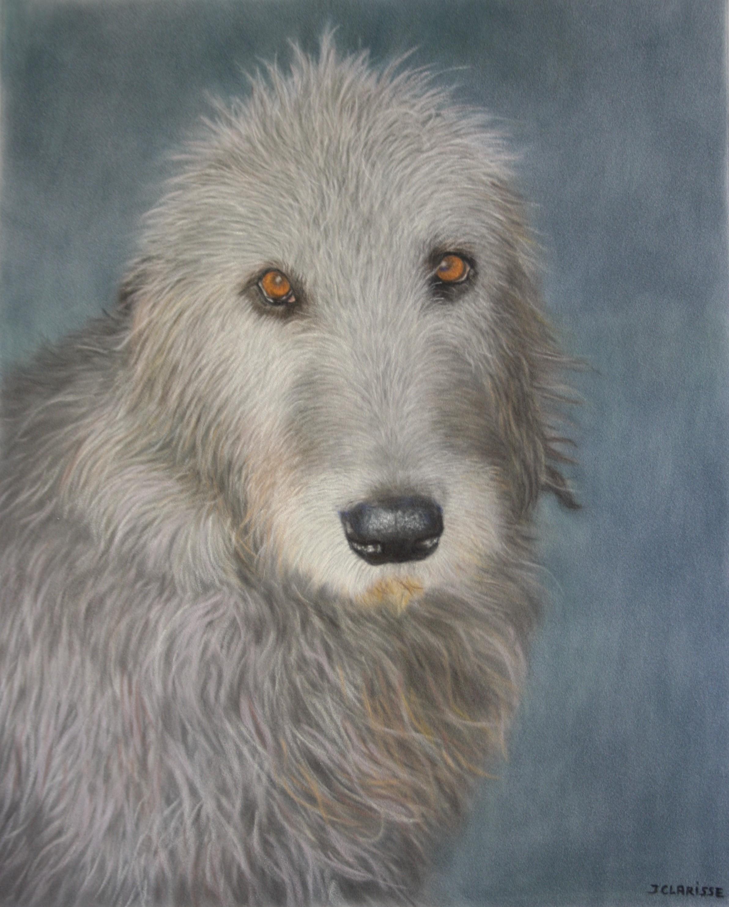 Walkeera, Irish Wolfhound