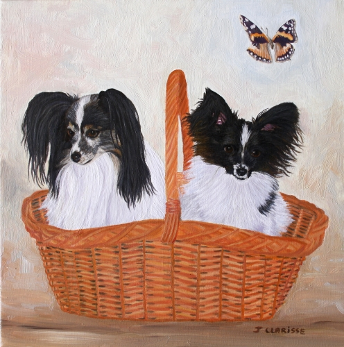 Epagneul Papillons